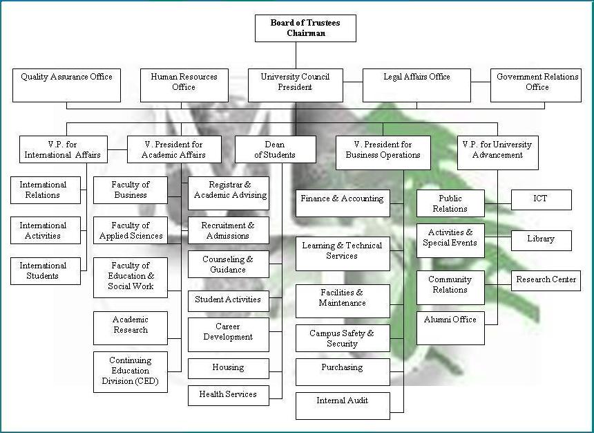 Organizational Chart Modern University For Business  Science Document